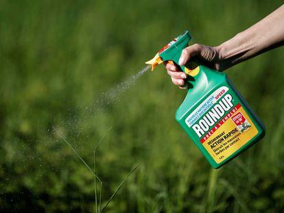 Mulher utiliza o pesticida Round Up, da Monsanto.