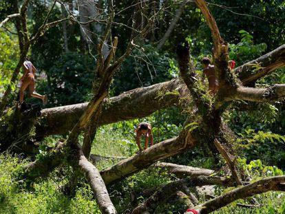 Crianças brincam em aldeia dentro da Terra Indígena Yanomami, onde vivem 25.000 índios