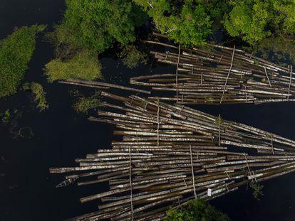Foto aérea tirada em 16 de julho de 2020 mostra carga de madeira apreendida no rio Manacapuru, no Amazonas.