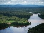 RORAIMA, BRAZIL - JUNE 30:  Aerial view from an helicopter of the Brazilian Amazon region near the border with Venezuela at the Auaris on June 30, 2020 in Roraima, Brazil. (Photo by Andressa Anholete / Getty Images)