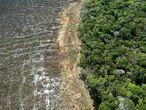 Imagen aérea de una zona deforerstada en la región de Sinop, en Mato Grosso, en agosto pasado.