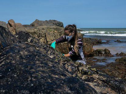 Uma voluntária ajuda a limpar as pedras na praia da Pedra do Sal, na Bahia.