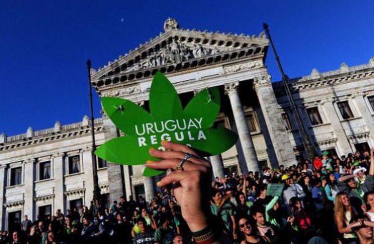 Simpatizantes da legalização da maconha no Uruguai.