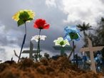Flowers placed on graves are pictured at the Parque Taruma cemetery, amid the coronavirus disease (COVID-19) outbreak, in Manaus, Brazil, June 11, 2020.  REUTERS/Bruno Kelly