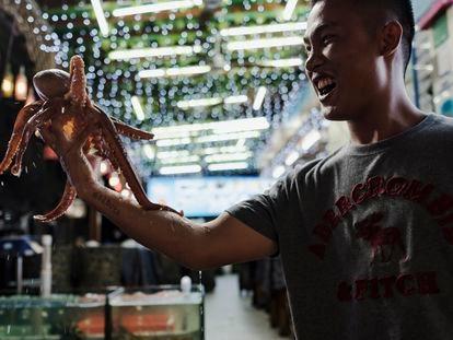 Um vendedor de pescado segura um polvo vivo nas mãos para oferecer às pessoas passam por sua loja na praia de Dapeng Jiaochangwei.