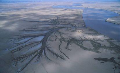 O delta do rio Colorado, na reserva da biosfera do Alto Golfo da Califórnia (México)