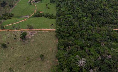 Território indígena dos Surui, no Estado de Rondônia, na Amazônia.