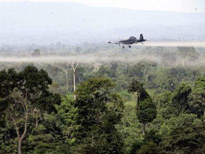 Fumigação aérea sobre cultivos de coca no sul de Colômbia.