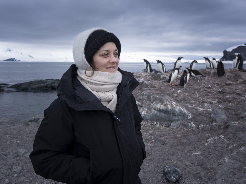 A atriz Marion Cotillard visita a ilha Trinity em expedição do Greenpeace.