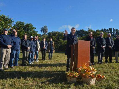 Mauricio Macri, em uma plantação de cítricos em Concordia.