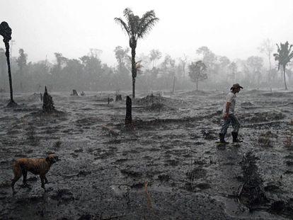 Fazendeiro caminha em meio a área devastada por incêndio na região de Porto Velho, Rondônia.