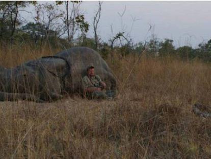 A dramática morte de um dos caçadores mais famosos do mundo