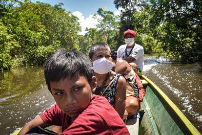 Indígenas Matis du Brasil.