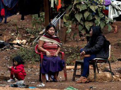 Maior cidade do Brasil tem uma população indígena que luta para que suas terras sejam demarcadas Nesta semana, sofreram um revés com a anulação do Ministério da Justiça do processo