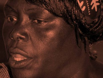 Wangari Maathai, a queniana que semeou árvores e ideais