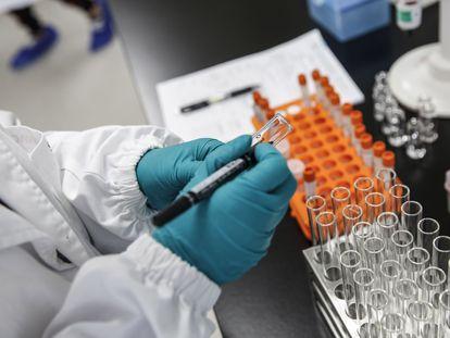 Pesquisador do laboratório chinês Sinovac em Pequim trabalha na produção da vacina Coronavac, em 24 de setembro.
