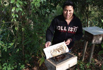 O cacique Ricardo Benete mostra o apiário da terra guarani.