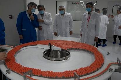 Doses da vacina do coronavírus fabricada pelo Sinovac.