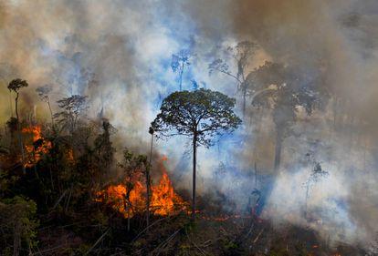 Um incêndio ilegal em uma reserva ambiental da Amazônia, em agosto.