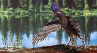 Ilustração da 'Archaeornithura meemannae', que viveu no Cretáceo Inferior.
