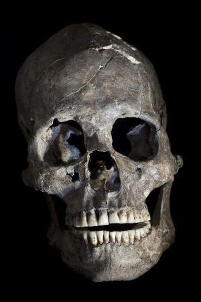 Crânio completo da tumba 26.