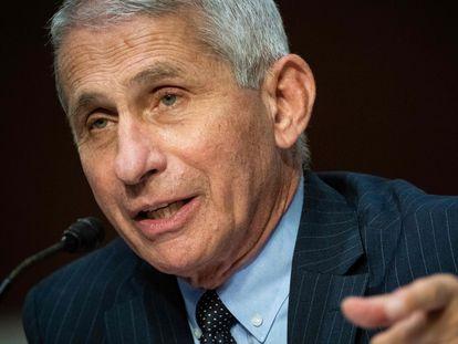 Anthony Fauci durante uma audiência no Capitólio em 30 de junho.