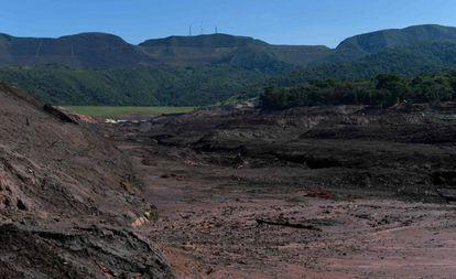 A lama após um mês da ruptura da barragem do Córrego do Feijão, em Brumadinho.