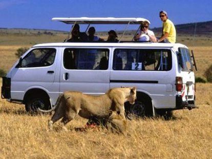 Visitantes no parque nacional do Quênia.