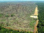 Vista aérea de una zona deforestada de la Amazonia en Pará (Brasil) captada por Greenpeace en 2004.