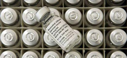 Vacina experimental contra a gripe aviária desenvolvida na Universidade de Maryland em 2005.