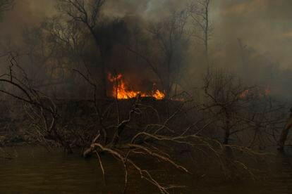 O fogo destruindo tudo em seu caminho, em Boca de la Milonga. Em 2020, o delta do Paraná sofreu os piores incêndios em mais de uma década, em sua maioria causados por ação humana. O Governo anunciou que vai reforçar o controle nos próximos meses para evitar que a tragédia ambiental se repita.