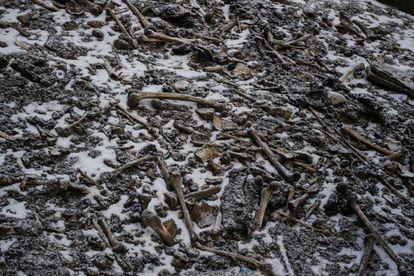Restos de esqueletos dispersos ao redor da lagoa Roopkund.