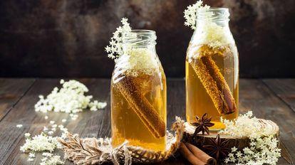 Chá de kombucha fermentado em infusão de flor de sabugueiro com canela e gengibre