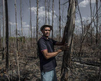 Marcone Ramalho entre eucaliptos queimados em Forquilha (Piauí)