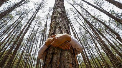 Menino celebra o Dia Mundial do Meio Ambiente no bosque de Gokarna, no Nepal