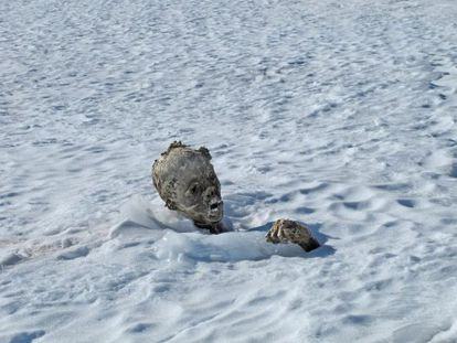 Foto da múmia encontrada no Pico de Orizaba, feita por Israel Ángel Mijangos.