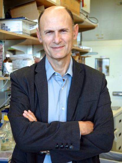 Juan Carlos Izpisúa, pesquisador do Instituto Salk.