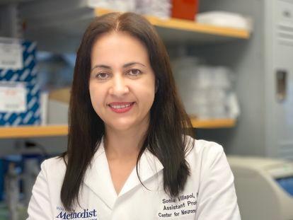 Sonia Villapol em seu laboratório em Houston na semana passada.