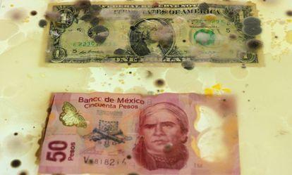 Um dólar americano e 50 pesos mexicanos na mesma caixa.