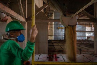 Caminhões descarregam soja em um silo da cidade de Sinop.