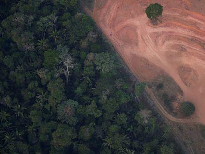 Vista aérea de uma zona deforestada cerca de Porto Velho (Estado de Rondonia).