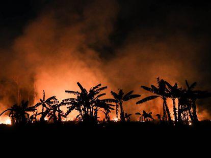 Incêndio em uma área de floresta amazônica em Porto Velho, Rondônia, no dia 9 de setembro de 2019.