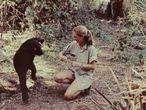 La primatóloga británica Jane Goodall en el Parque Nacional Gombe Stream (Tanzania)