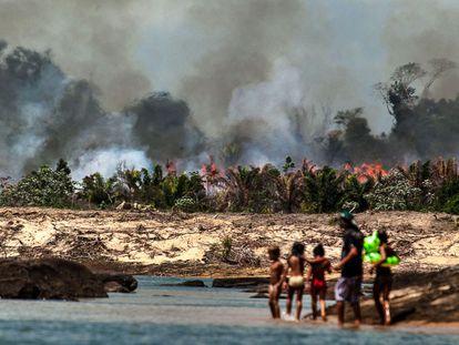 Uma das ilhas do Xingu, desmatada e queimada para o enchimento do lago de Belo Monte.