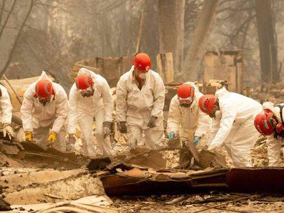 Busca de restos humanos entre os escombros de Paradise, Califórnia, na quarta-feira.