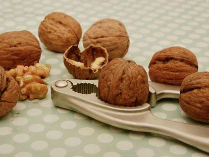 Por que os frutos secos não engordam?