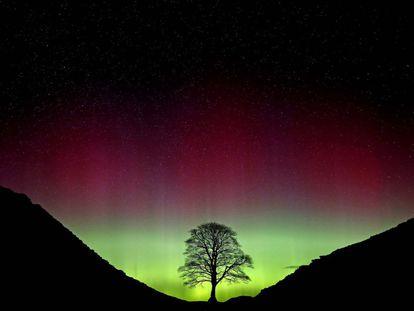 A aurora boreal vista em Northumberland, ao norte da Inglaterra.