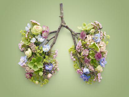 Se fosse apenas o cigarro... Tudo o que deveríamos fazer para ter pulmões saudáveis e sequer sabemos