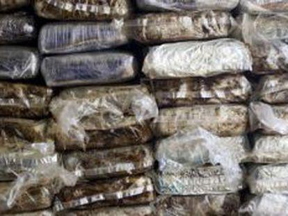 O tráfico de drogas no Caribe segue crescendo.