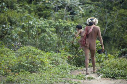Mulher indígena da etnia Zo'é carrega sua criança na Terra Indígena Zo'é, no Pará.